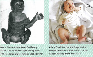 Kirkilionis Schimpanse und Baby